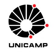 unicamplogo2